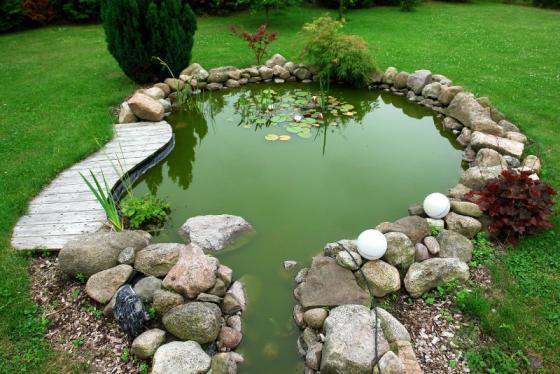 création bassin aquatique