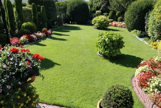 Jardinier création de jardin